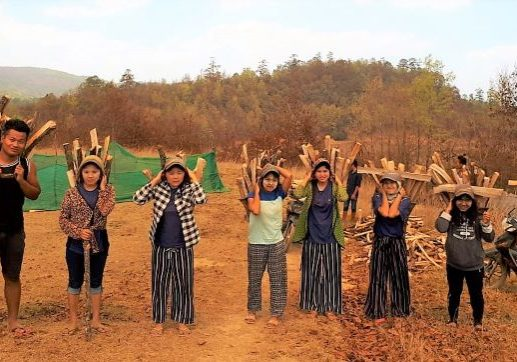 2020, 4 Kima YG and firewood, resized